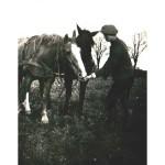 Pferdebrot